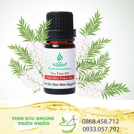 Tinh Dầu Tràm Trà Chuyên Chất (Tea Tree)