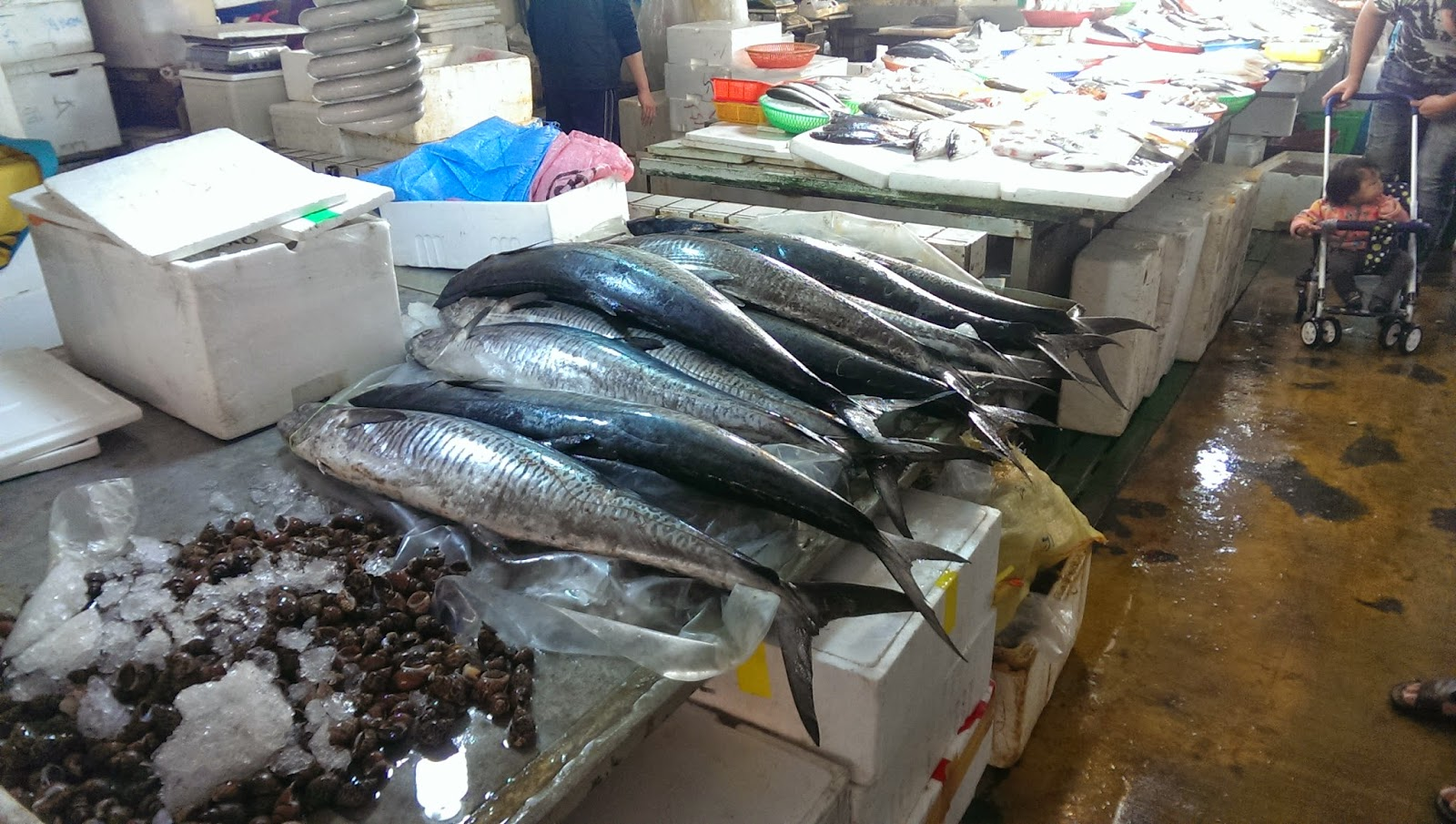 2015 02 02%2B11.58.03 - [食記] 葉家生魚片 - 布袋觀光漁市中的鮮魚餐廳
