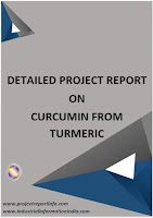 Project Report on Curcumin Extraction from Turmeric