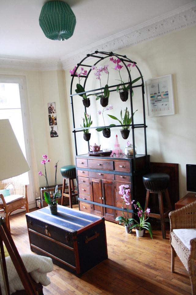 le blog de stella paris un orchid 39 stylist dans mon salon. Black Bedroom Furniture Sets. Home Design Ideas
