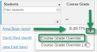 Beside student name, click under Course Grade, on drop-down arrow, select Course Grade Override