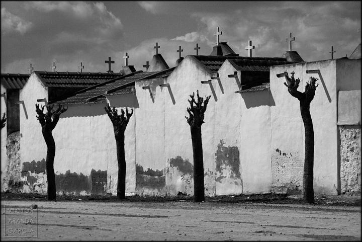 fotografía, Fuente Álamo, naturaleza, Arriba Extraña, cruces, cementerio, árboles