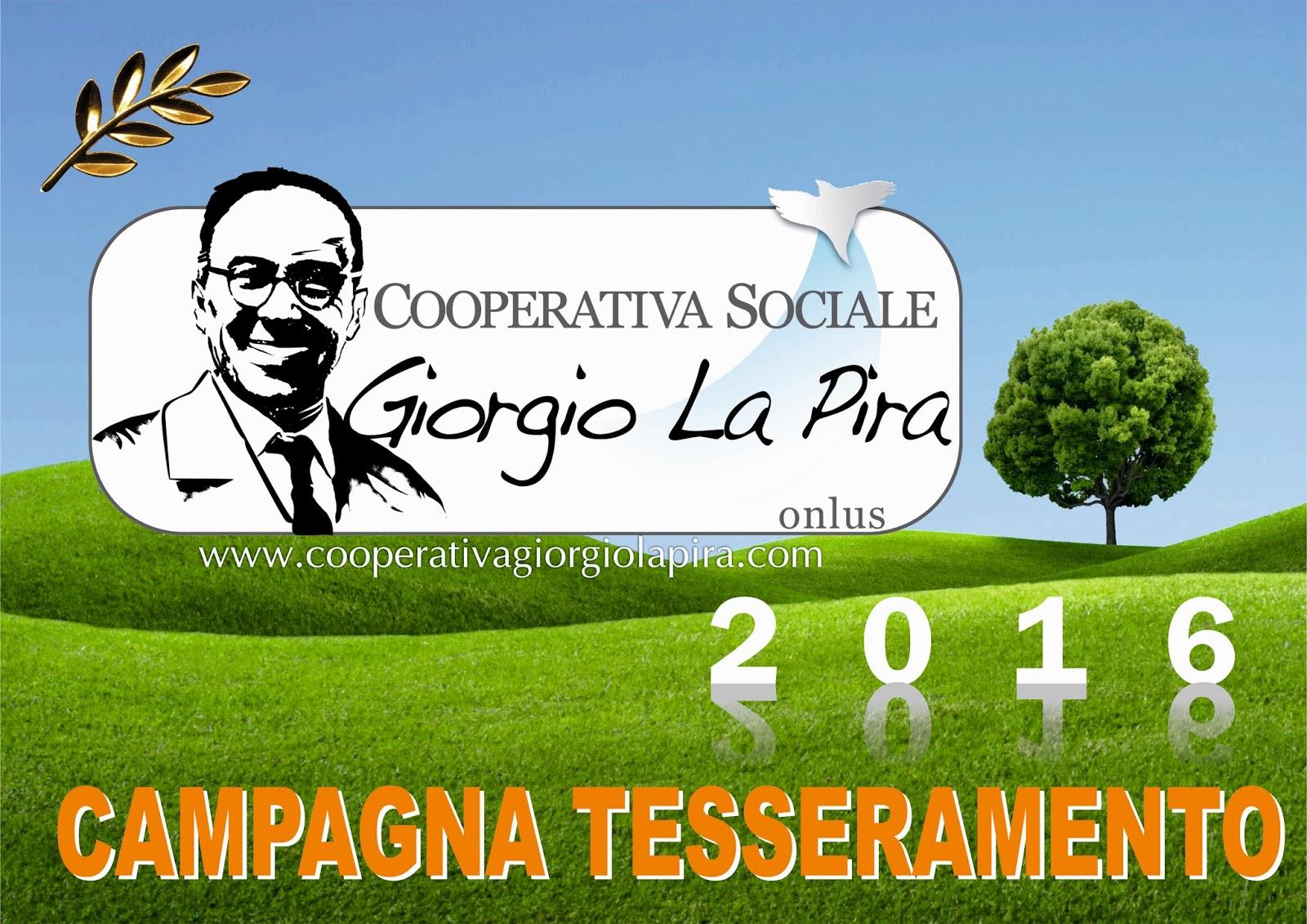 Cooperativa sociale la pira - La finestra cooperativa sociale ...