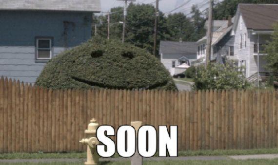 30 Funny Soon Meme Pics: The Feral Irishman: SOON