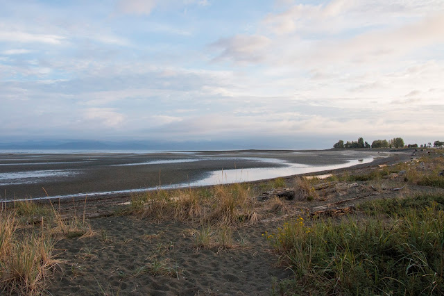 Picture of the sunrise on the beach in Parksville