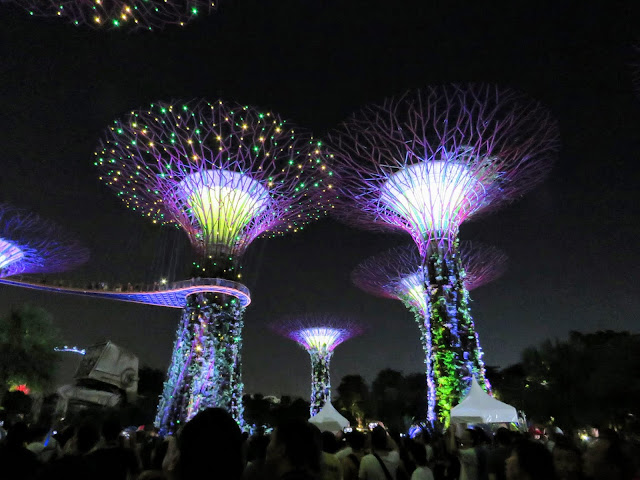 Supertrees at Gardens by the Bay lit up at night in Singapore