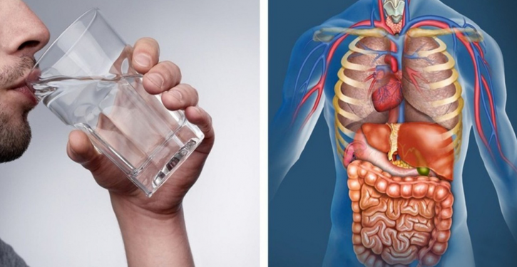 Replace All Drinks With Water For 30 Days And Watch What Happens To Your Body
