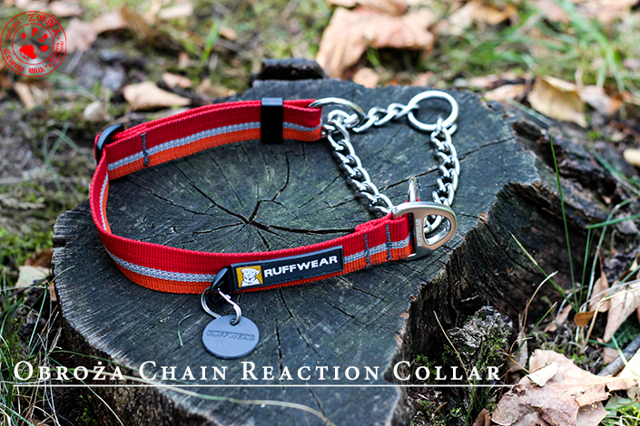 http://www.zonaczarnywilk.pl/2018/08/obroza-chain-reaction-collar-od-ruffwear.html