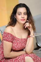 Diksha Panth in a Deep neck Short dress at Maya Mall pre release function ~ Celebrities Exclusive Galleries 121.JPG