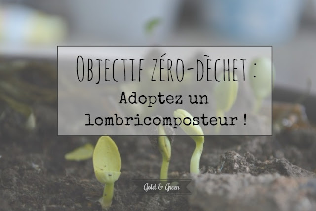 objectif-zero-dechet-lombricomposteur