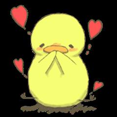 a warm Chick