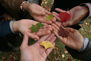 Pengertian Toleransi Menurut Para Ahli serta jenis dan fungsi