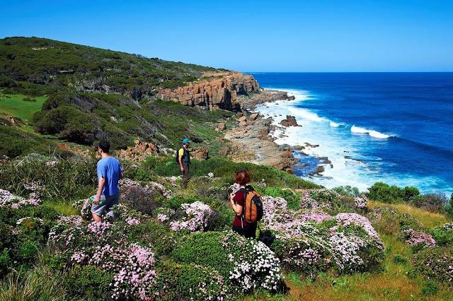 Cohn & Wolfe akan promosikan Tourism Western Australia untuk kawasan Asia Tenggara