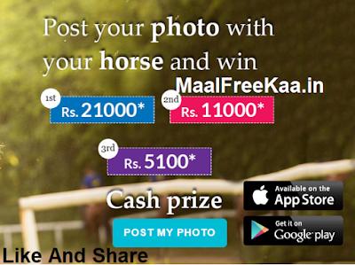 Photo Horse Contest