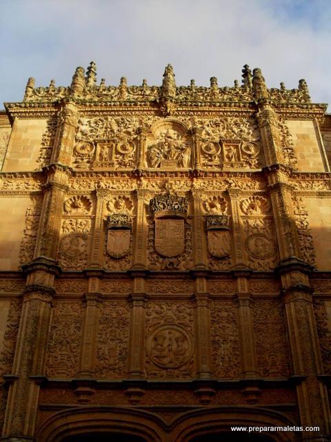 Buscando la rana de Salamanca