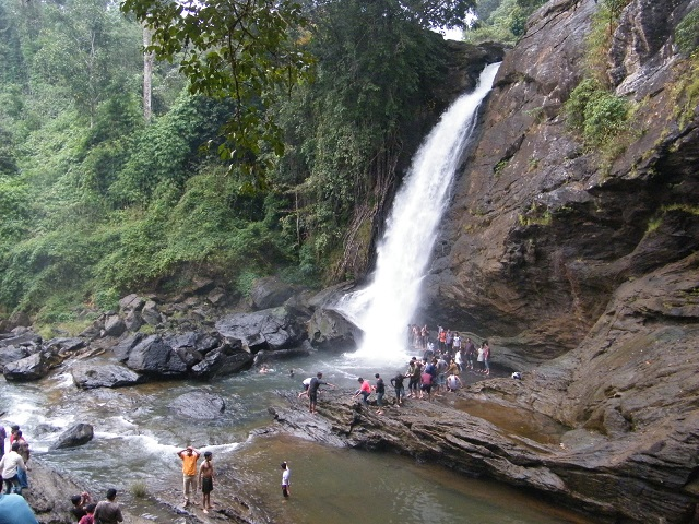 Soochipara Falls also known as Sentinel Rock Waterfalls is a three-tiered waterfall in Vellarimala, Wayanad, surrounded by Deciduous, Evergreen and Montane forests.