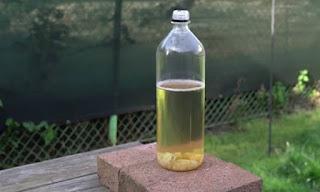 Πήρε ένα πλαστικό μπουκάλι κι έφτιαξε παγίδα για μύγες! Θα την φτιάξετε αμέσως... (video)