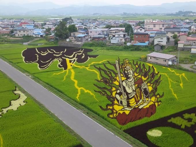 seni atas sawah padi di jepun