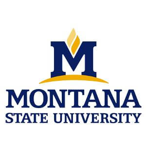 logo montana state university