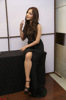 Angela Krislinzki in Transparent Black Gown at Rogue Movie Teaser Launch 1st March 2017 073.JPG