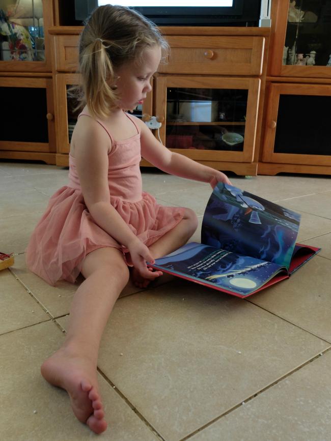 Sweet Turtle Soup - Secret Santa Mommy & Me Book Exchange | 2016
