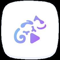 Stellio Player Mod v5.4.1 Pro APK