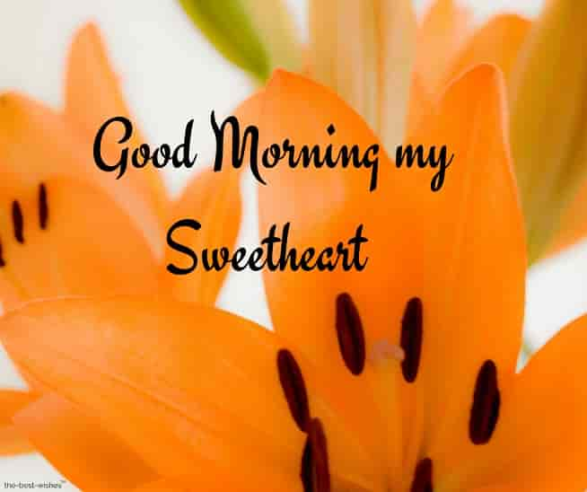 good morning my sweetheart with orange flower