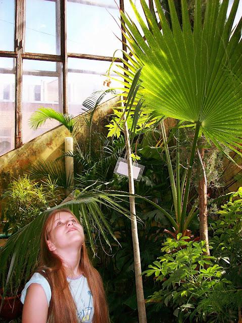 Самарский детский эколого-биологический центр: гигантская трава
