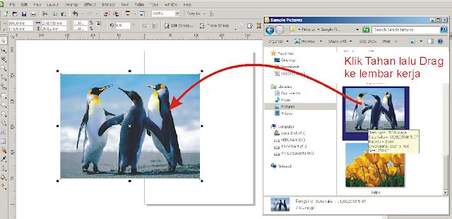 Cara Lengkap Mengimport File atau Gambar di CorelDRAW