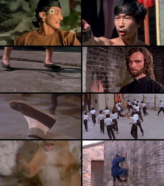 Snake in the Eagles Shadow 1978 Dual Audio Hindi 720p BluRay