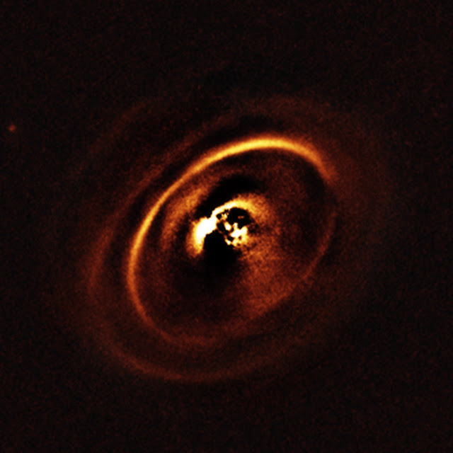 Planetary Disc around the young star RX J1615