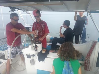 sailing on beneteau 393