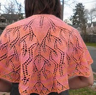 http://www.ravelry.com/patterns/library/fall-of-leaves