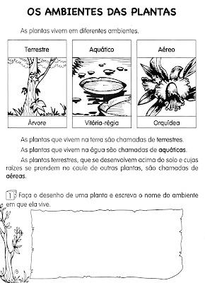 Atividades de Ciências - Plantas - AMBIENTES DAS PLANTAS