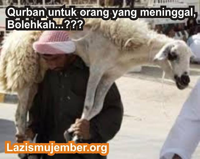 Qurban untuk orang yang meninggal
