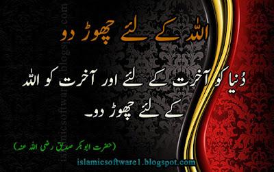 urdu aqwal, best urdu quotes
