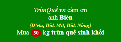 Trùn quế về D'rLa, Dak Mil, Dak Nong