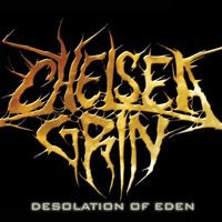 [2010] - Desolation Of Eden