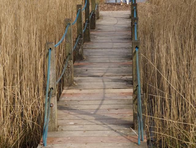 Kinder brauchen Abenteuer! Zwei spannende Abenteuer-Spielplätze in der näheren Umgebung von Kiel. Auf dem Kinderabenteuerland Wendtorf in der näheren Umgebung Kiels kann man sich mit dem Floß übers Wasser ziehen.