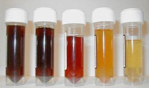 Obat Herbal Hematuria / Darah Dalam Urin, Mengobati & Menyembuhkan Secara Alami Hingga Tuntas serta Efektif dan Aman