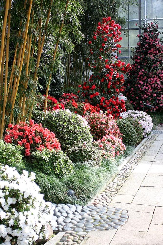 Karstens Blog: Bilder Botanika Bremen Teil 1