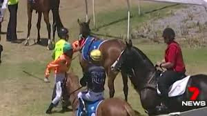 Jockey Punches Horse