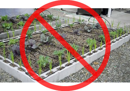 Healthy Sustainable Living A Warning About Cinder Block Or Concrete Masonry Gardens