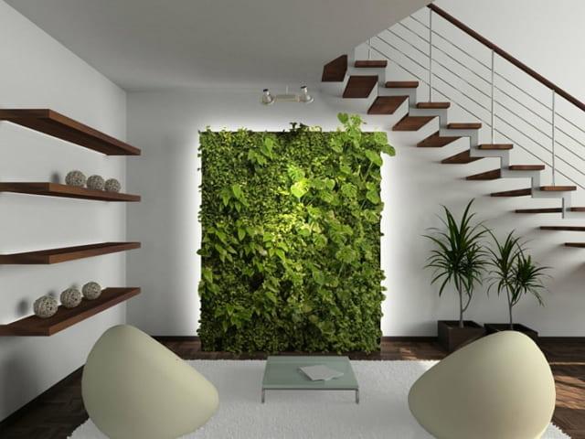 gambar tanaman hias bawah tangga