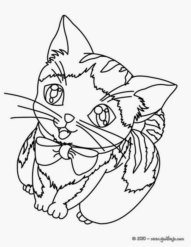 Como Dibujar Animales F 225 Cilmente Para Ni 241 Os How To Draw