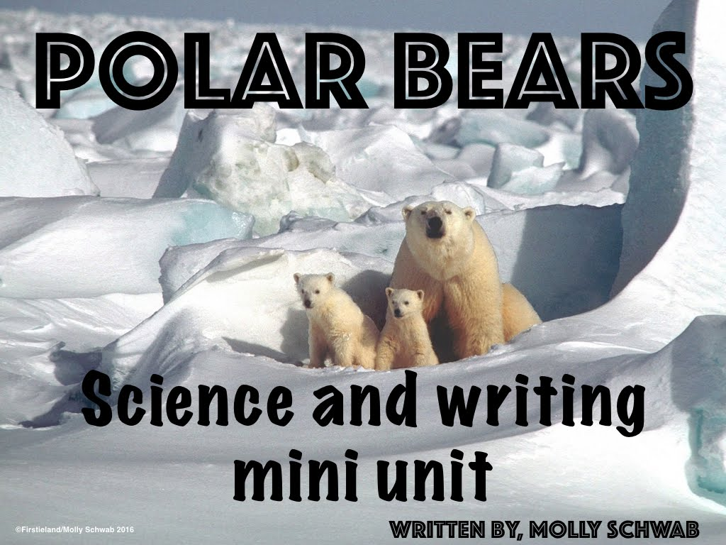 Polar Bears - SCIENCE AND WRITING MINI UNIT