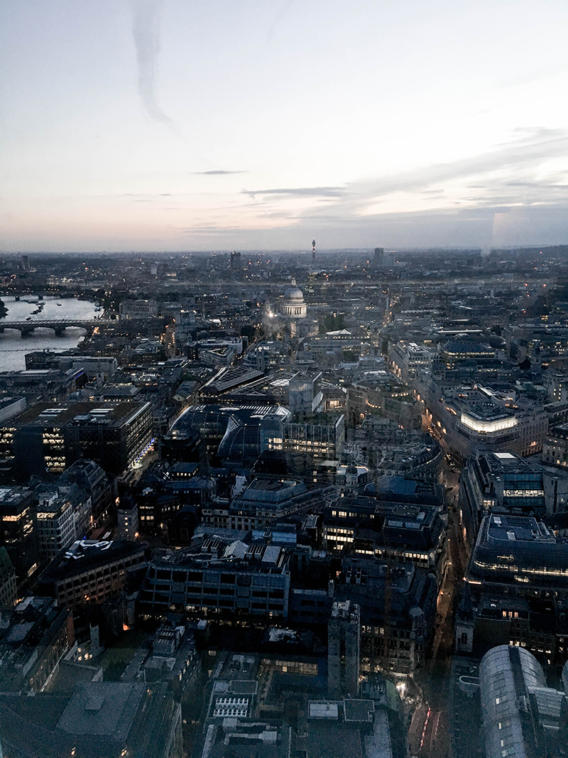 best bars in london, sky garden, garden bar in london