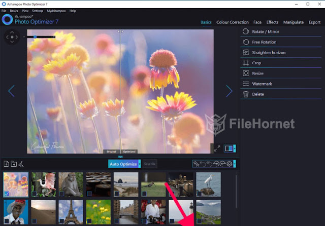 Download Ashampoo Photo Optimizer 2019 for Windows