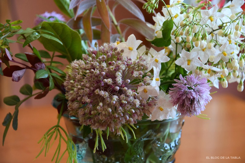 Garden bouquet con Allium ampeloprasum, solanum jasminoides, Allium schoenoprasum, Rhipsalis baccifera