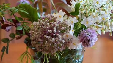 Del jardín al jarrón. Garden bouquet con Allium y Solanum jasminoides